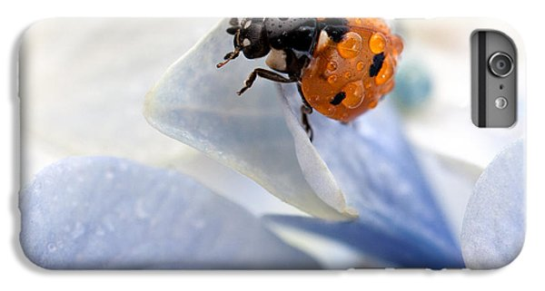 Beetle iPhone 6s Plus Case - Ladybug by Nailia Schwarz
