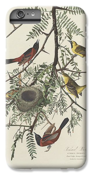 Orchard Oriole IPhone 6s Plus Case