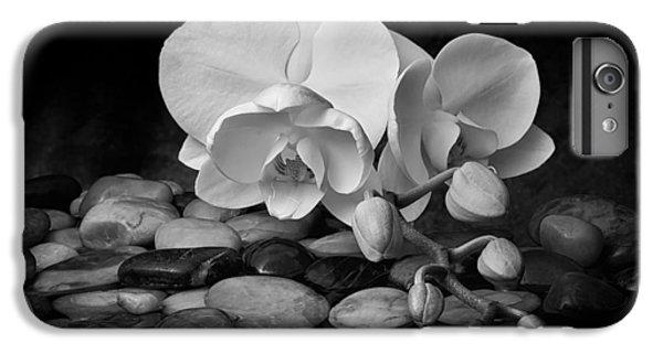 Orchid - Sensuous Virtue IPhone 6s Plus Case by Tom Mc Nemar