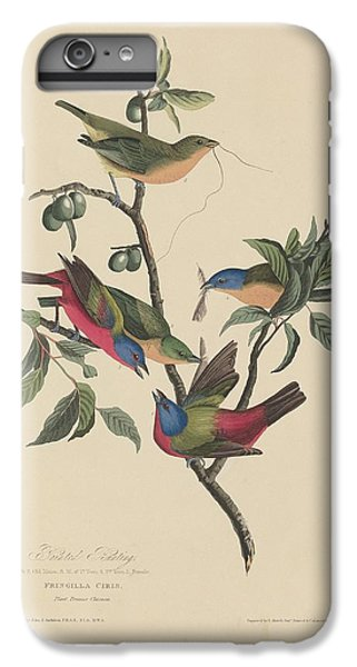 Painted Bunting IPhone 6s Plus Case by Dreyer Wildlife Print Collections
