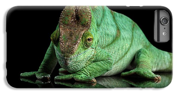 Parson Chameleon, Calumma Parsoni Orange Eye On Black IPhone 6s Plus Case by Sergey Taran