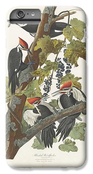 Pileated Woodpecker IPhone 6s Plus Case by John James Audubon