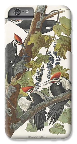 Pileated Woodpecker IPhone 6s Plus Case by Rob Dreyer