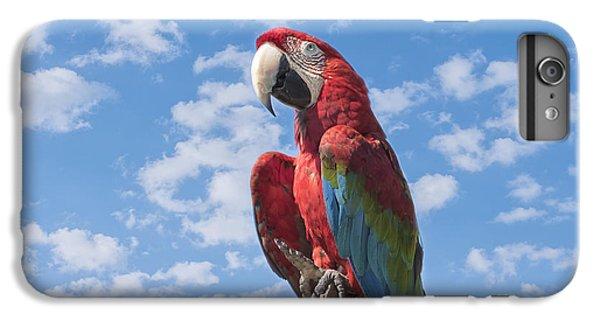 Macaw iPhone 6s Plus Case - Scarlet Macaw by Kim Hojnacki