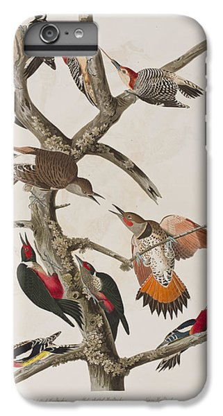 Woodpeckers IPhone 6s Plus Case by John James Audubon