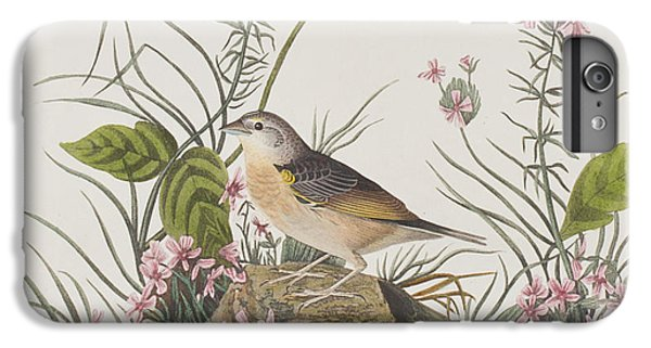 Yellow-winged Sparrow IPhone 6s Plus Case by John James Audubon