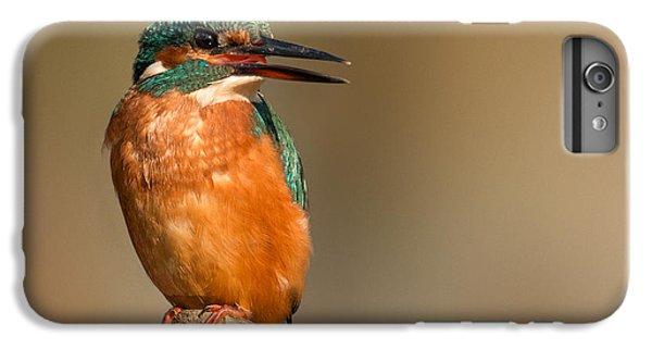 Kingfisher iPhone 6s Plus Case -   Kingfisher by Ian Hufton