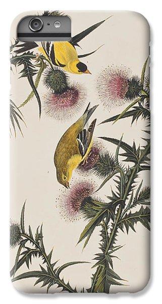 American Goldfinch IPhone 6s Plus Case by John James Audubon