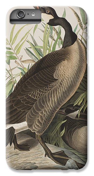 Canada Goose IPhone 6s Plus Case by John James Audubon