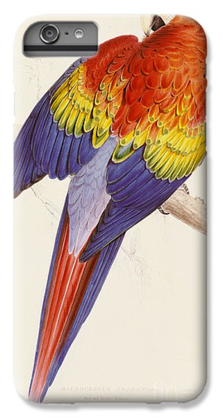 Red And Yellow Macaw IPhone 6s Plus Case by Edward Lear
