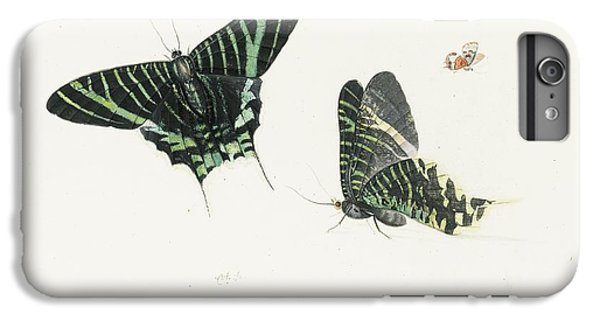 Studies Of Two Butterflies IPhone 6s Plus Case by Anton Henstenburgh