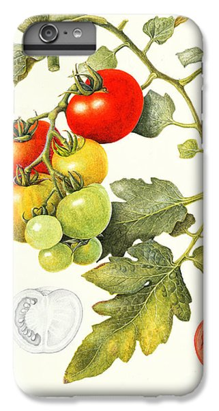 Tomatoes IPhone 6s Plus Case by Margaret Ann Eden