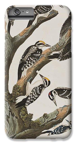Woodpeckers IPhone 6s Plus Case by John James Audubon