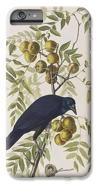 American Crow IPhone 6s Plus Case by John James Audubon