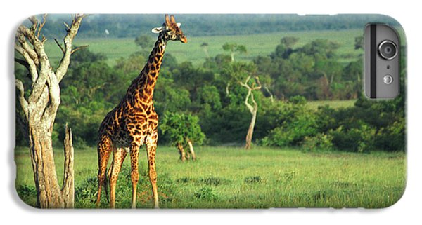 Giraffe IPhone 6s Plus Case
