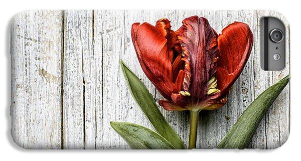 Tulip iPhone 6s Plus Case - Tulip by Nailia Schwarz