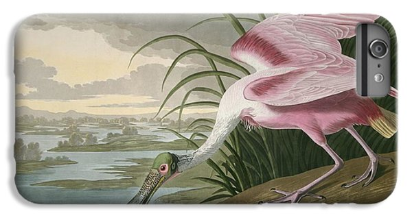 Roseate Spoonbill IPhone 6s Plus Case by Rob Dreyer