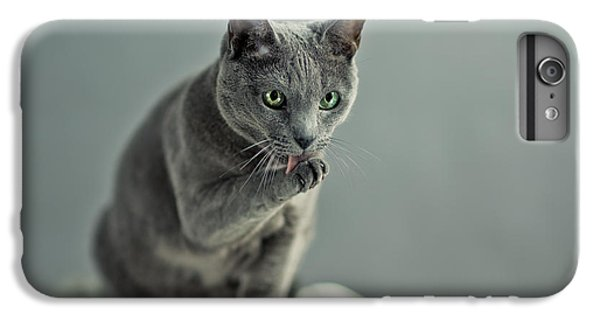 Cats iPhone 6s Plus Case - Russian Blue by Nailia Schwarz