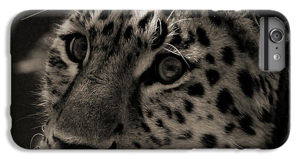 Amur Leopard IPhone 6s Plus Case