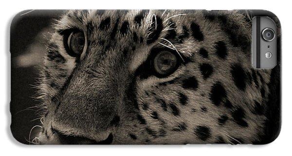 Amur Leopard IPhone 6s Plus Case by Martin Newman