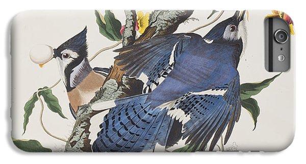 Blue Jay IPhone 6s Plus Case by John James Audubon