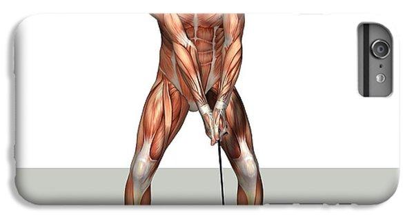 Male Muscles, Artwork IPhone 6s Plus Case by Friedrich Saurer