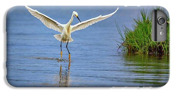 A Snowy Egret Dip-fishing IPhone 6s Plus Case by Rick Berk