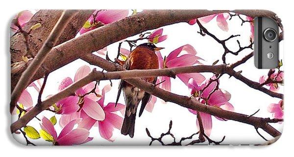 A Songbird In The Magnolia Tree - Square IPhone 6s Plus Case