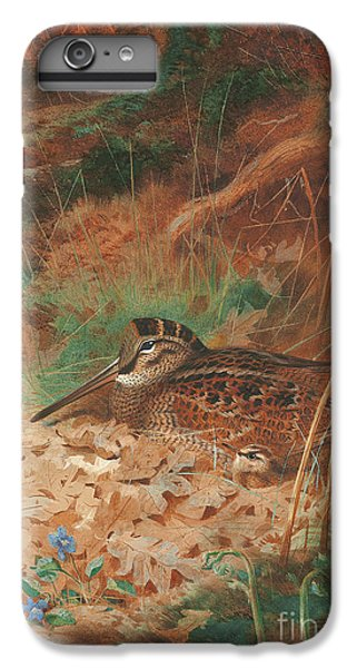 A Woodcock And Chick In Undergrowth IPhone 6s Plus Case by Archibald Thorburn