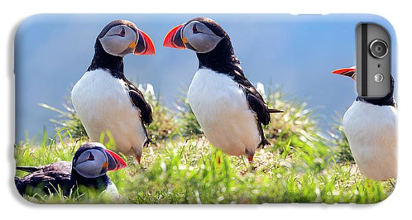A World Of Puffins IPhone 6s Plus Case