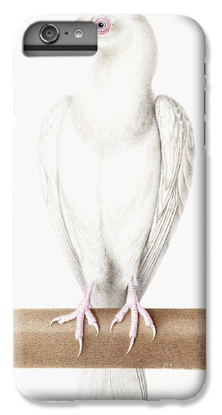 Albino Crow IPhone 6s Plus Case by Nicolas Robert