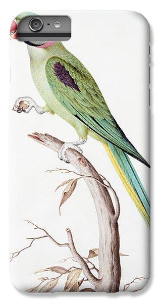 Alexandrine Parakeet IPhone 6s Plus Case by Nicolas Robert