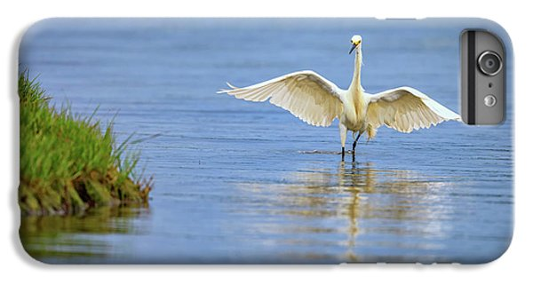 An Egret Spreads Its Wings IPhone 6s Plus Case by Rick Berk