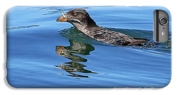 Auklets iPhone 6s Plus Case - Angry Bird by BYETPhotography