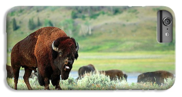 Angry Buffalo IPhone 6s Plus Case