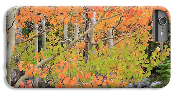 IPhone 6s Plus Case featuring the photograph Aspen Stoplight by David Chandler
