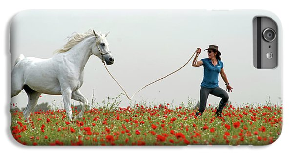 At The Poppies' Field... 2 IPhone 6s Plus Case by Dubi Roman