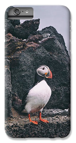 Atlantic Puffin IPhone 6s Plus Case by Happy Home Artistry