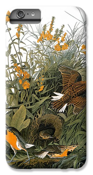 Audubon: Meadowlark IPhone 6s Plus Case by Granger