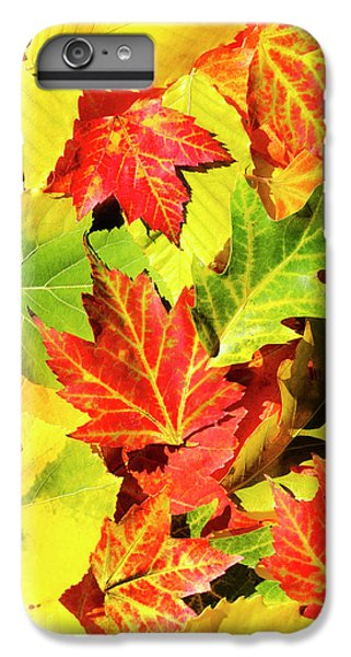IPhone 6s Plus Case featuring the photograph Autumn Leaves by Christina Rollo