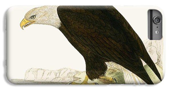 Bald Eagle IPhone 6s Plus Case
