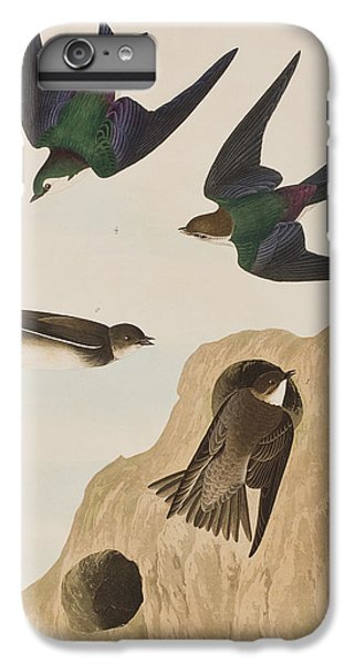 Bank Swallows IPhone 6s Plus Case by John James Audubon