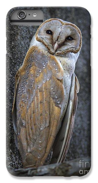 Barn Owl IPhone 6s Plus Case