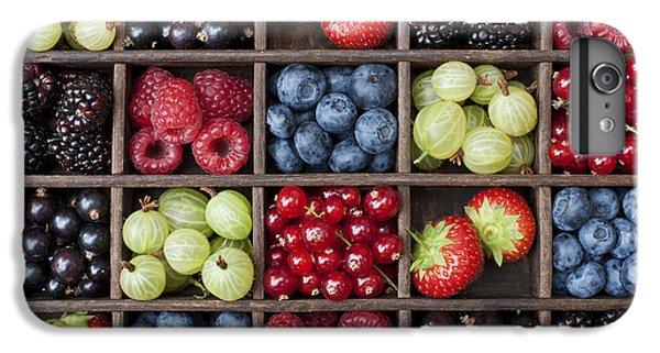 Berry Harvest IPhone 6s Plus Case