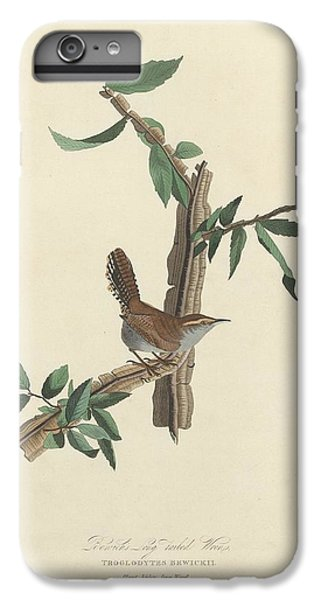 Bewick's Long-tailed Wren IPhone 6s Plus Case by Dreyer Wildlife Print Collections