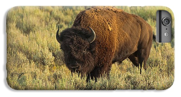 Bison IPhone 6s Plus Case