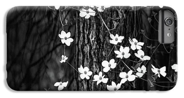 Yosemite National Park iPhone 6s Plus Case - Blooming Dogwoods In Yosemite Black And White by Larry Marshall