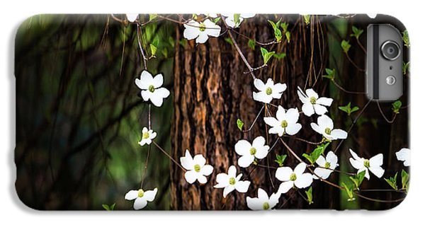 Yosemite National Park iPhone 6s Plus Case - Blooming Dogwoods In Yosemite by Larry Marshall