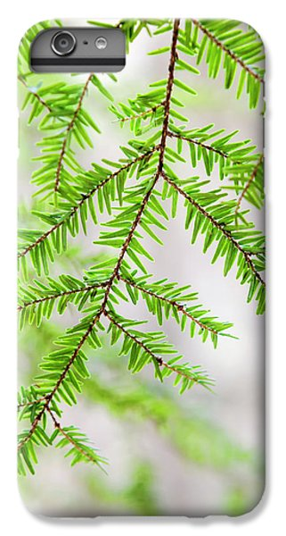 Botanical Abstract IPhone 6s Plus Case by Christina Rollo