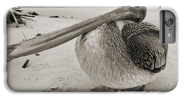 Pelican iPhone 6s Plus Case - Brown Pelican Folly Beach Morris Island Lighthouse Close Up by Dustin K Ryan